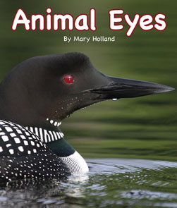 bookpage.php?id=AnimalEyes