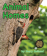 This sequel to Mary Holland's