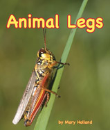 Can you smell with your feet? 
