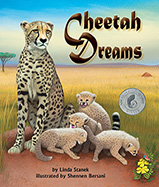 Cheetah Dreams
