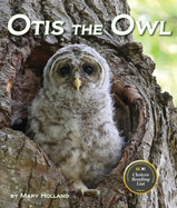 Huge eyes and fluffly feathers will 