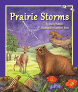 Cozy up for a rainy day read and explore 