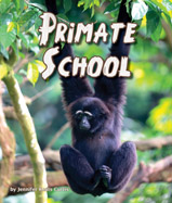 Gorillas using iPads, lemurs finger 