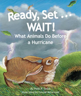 A hurricane forms over ocean. 