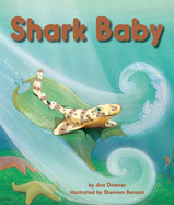 When Shark Baby's egg case 