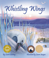 Marcel, a young tundra swan, is tired 