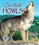 Rhythmic text takes readers through 