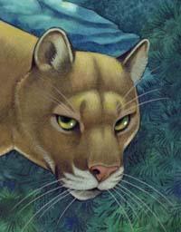 susan little cat book pdf